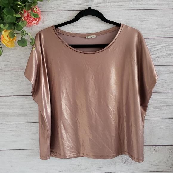 Zara Tops - Zara   Rose Gold Metallic Crop Top